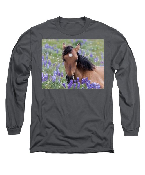 Wild Horse Among Lupines Long Sleeve T-Shirt