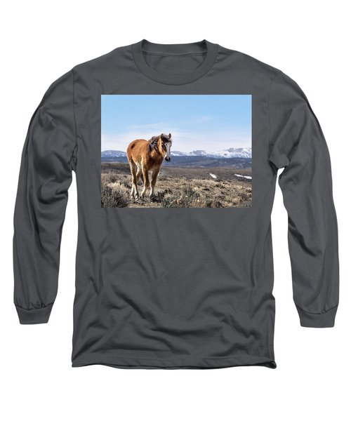 Wild Mustang Filly Of Sand Wash Basin Long Sleeve T-Shirt