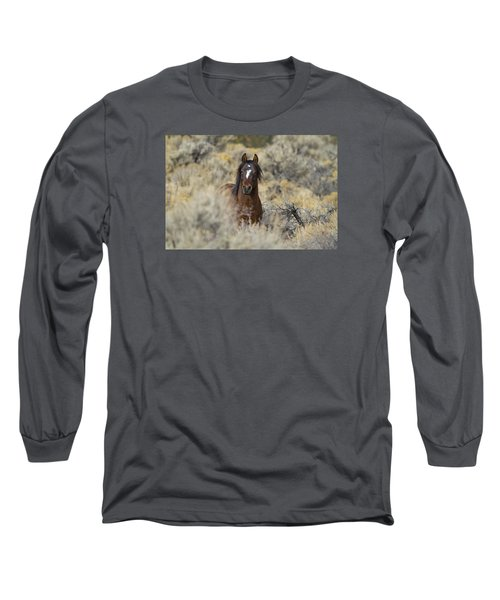 Wild Mustang Stallion Long Sleeve T-Shirt