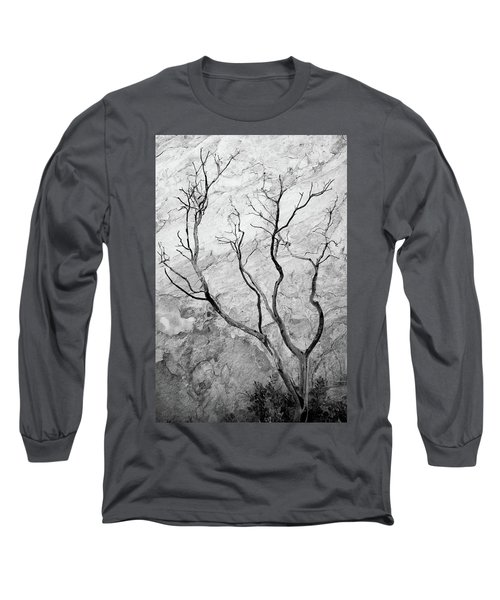 Wildfire Manzanita Long Sleeve T-Shirt