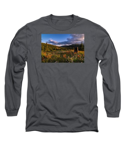 Wildflowers In The Evening Sun Long Sleeve T-Shirt by Michael J Bauer
