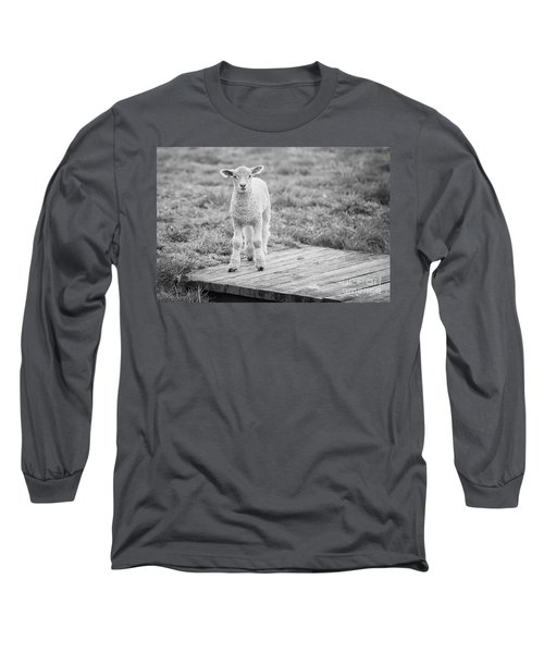 Williamsburg Lamb Long Sleeve T-Shirt