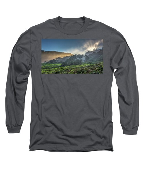 Long Sleeve T-Shirt featuring the photograph Windswept Trees On The Oregon Coast by Pierre Leclerc Photography