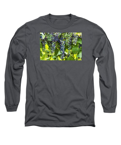 Wine Grape Colors Long Sleeve T-Shirt by Teri Virbickis