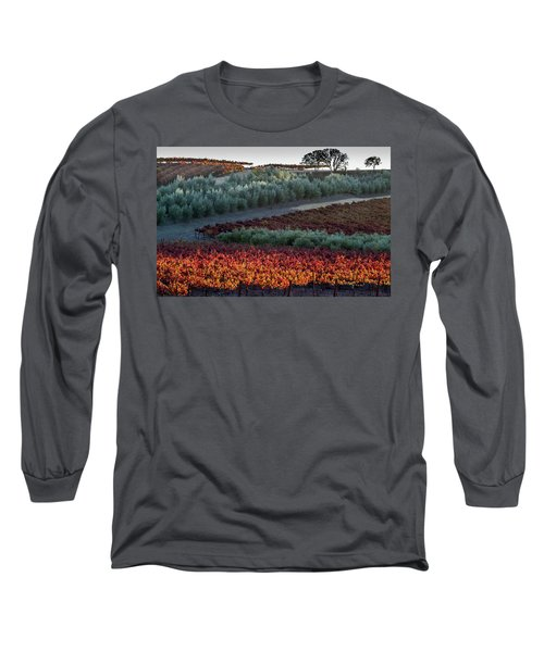 Long Sleeve T-Shirt featuring the photograph Wine Grapes And Olive Trees by Roger Mullenhour