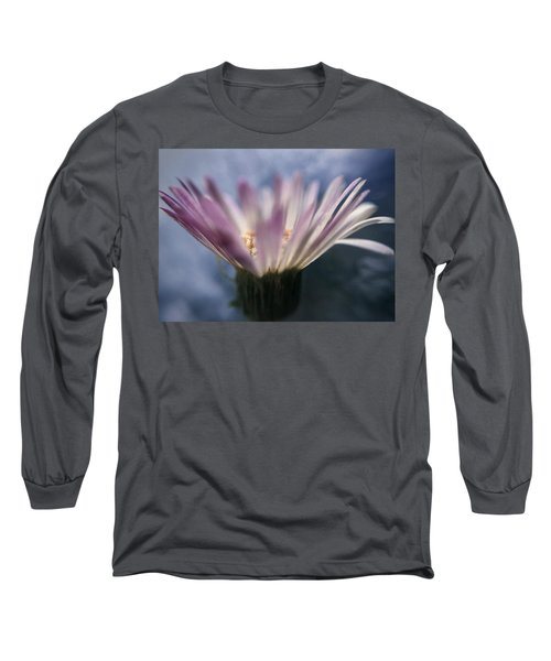 Wine In The Sky Long Sleeve T-Shirt