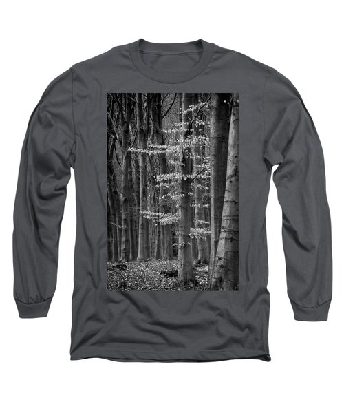 Winter Beech Long Sleeve T-Shirt by Inge Riis McDonald