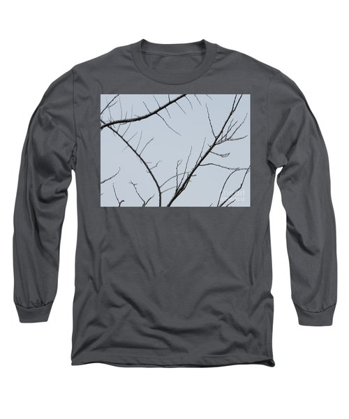 Winter Branches Long Sleeve T-Shirt