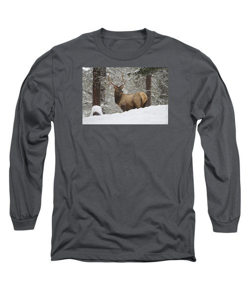 Winter Bull Long Sleeve T-Shirt