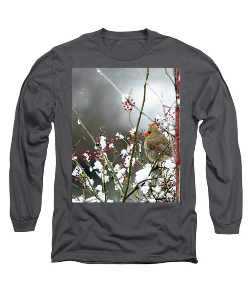 Long Sleeve T-Shirt featuring the photograph Winter Cardinal by Gary Wightman