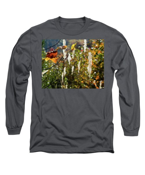 Long Sleeve T-Shirt featuring the photograph Winter Color by George Randy Bass