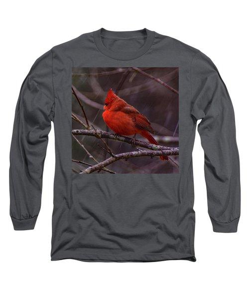 Winter Crimson  Long Sleeve T-Shirt