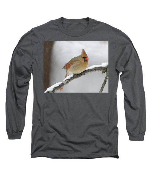 Winter Female Cardinal Long Sleeve T-Shirt