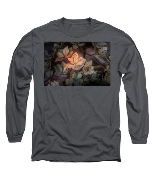 Winter Glow Long Sleeve T-Shirt
