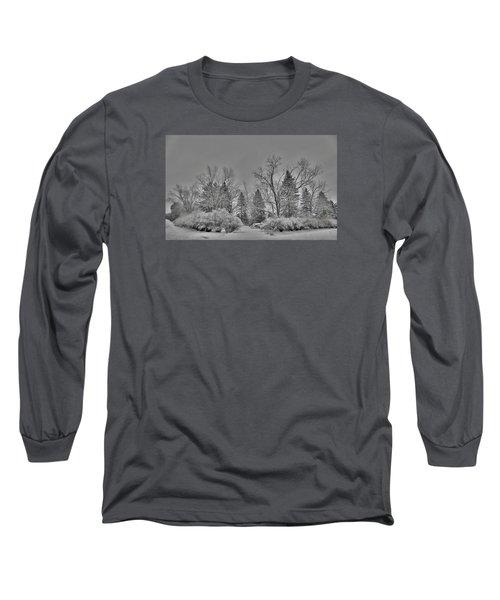 Winter Harmony Long Sleeve T-Shirt by Teresa Schomig