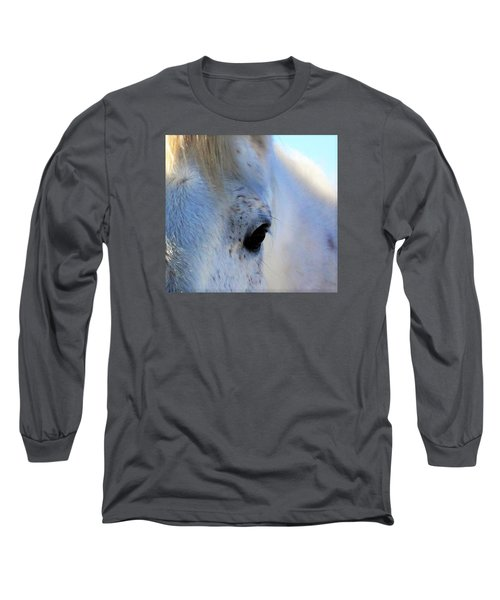 Winter Horse Long Sleeve T-Shirt