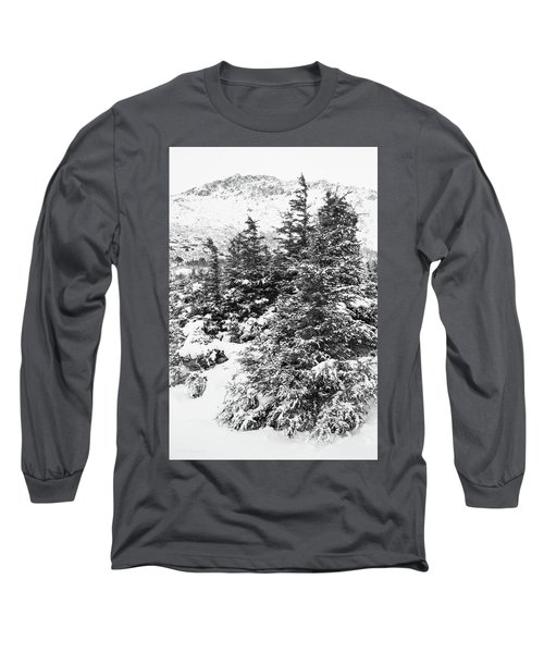 Winter Night Forest M Long Sleeve T-Shirt
