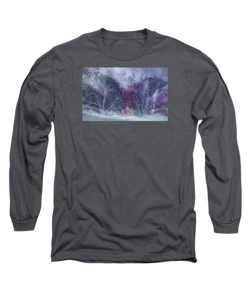 Long Sleeve T-Shirt featuring the photograph Winter Purple by Nareeta Martin