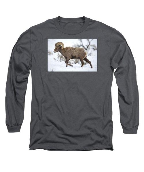 Winter Ram Long Sleeve T-Shirt