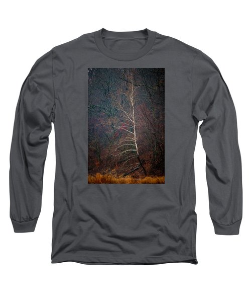 Winter Sycamore Long Sleeve T-Shirt
