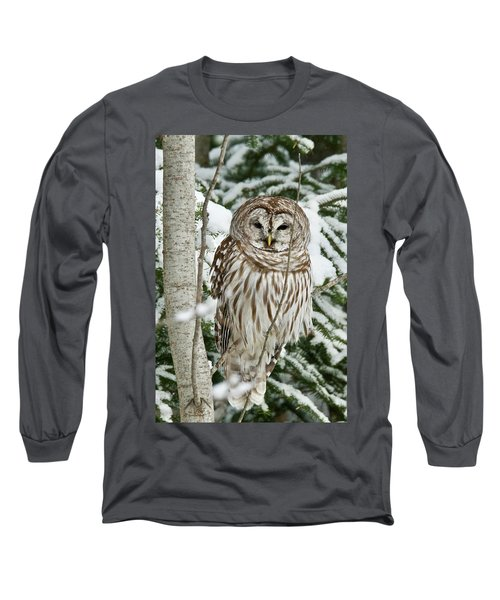 Winter Time Barred Owl Long Sleeve T-Shirt