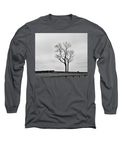 Winter Trees And Fences Long Sleeve T-Shirt by Nancy De Flon