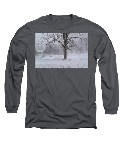 Long Sleeve T-Shirt featuring the photograph Winter Walnut by Denise Romano