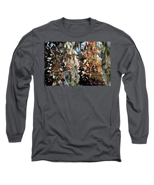 Wintering In Santa Cruz Long Sleeve T-Shirt