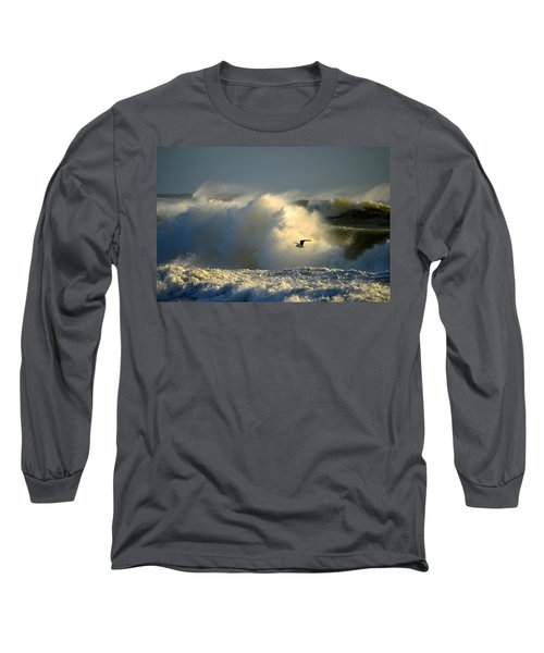 Winter's Passing Long Sleeve T-Shirt by Dianne Cowen