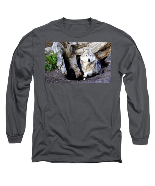 Wolf Den 1 Long Sleeve T-Shirt