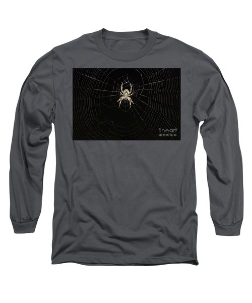 Wolf Spider And Web Long Sleeve T-Shirt by Mark McReynolds