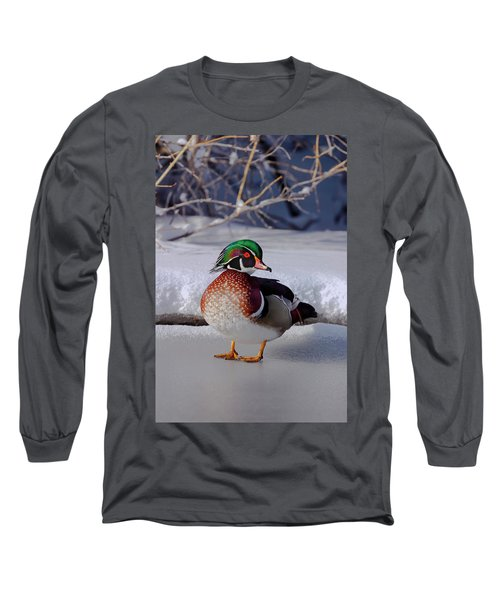 Wood Duck In Winter Snow And Ice, Montana, Usa Long Sleeve T-Shirt
