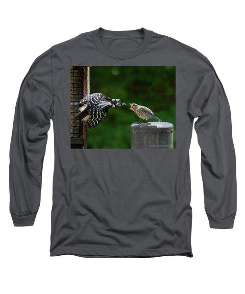 Woodpecker Feeding Bluebird Long Sleeve T-Shirt by Robert L Jackson