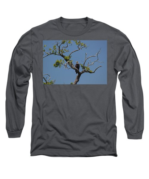 Yawkey Wildlife Reguge - American Bald Eagle Long Sleeve T-Shirt by Suzanne Gaff