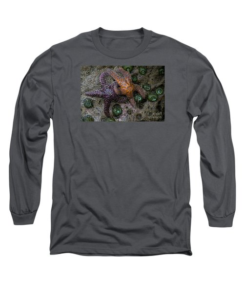 Orange And Purple Starfish II Long Sleeve T-Shirt by Chuck Flewelling