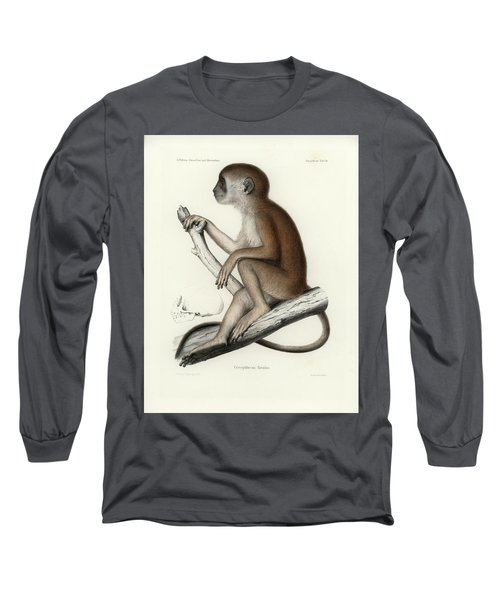 Yellow Baboon, Papio Cynocephalus Long Sleeve T-Shirt by J D L Franz Wagner