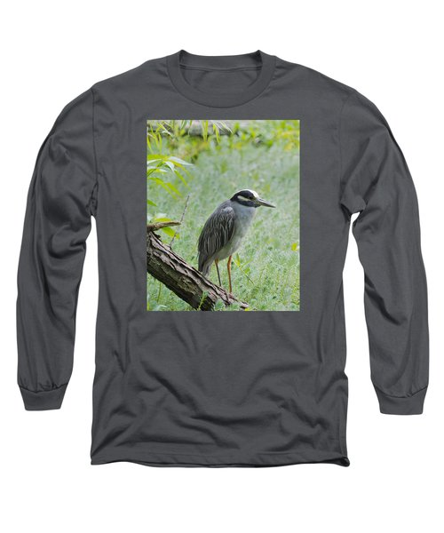 Yellow-crowned Night Heron 1 Long Sleeve T-Shirt