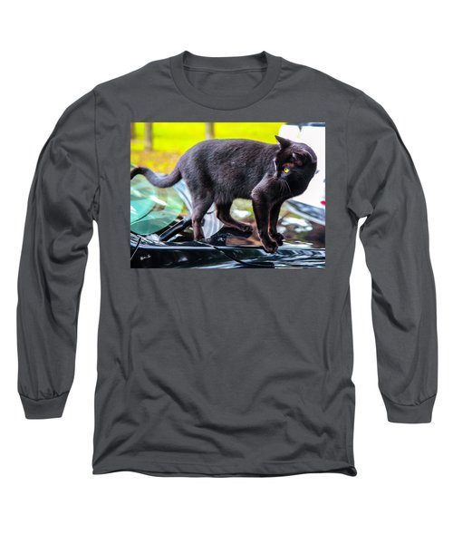 Long Sleeve T-Shirt featuring the photograph Yellow Eyed Cat by Madeline Ellis