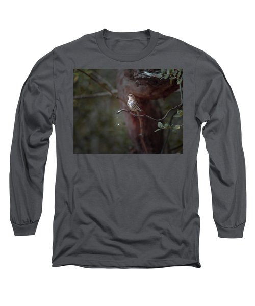 Yellow-rumped Warbler At Water Spout Long Sleeve T-Shirt