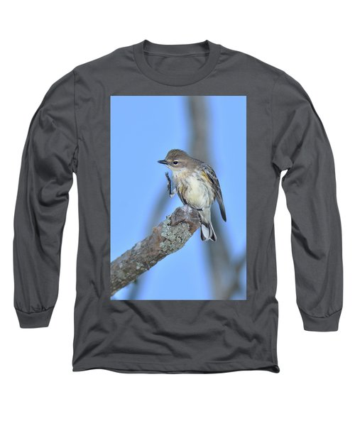 Yellow-rumped Warbler Itch Long Sleeve T-Shirt by Alan Lenk
