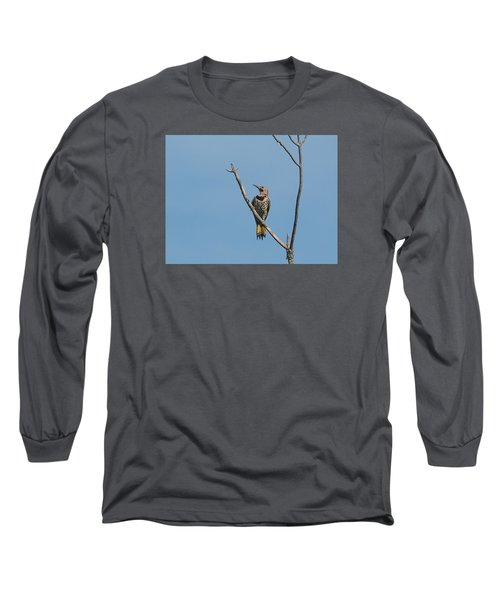 Yellow Shafted Flicker Front Long Sleeve T-Shirt
