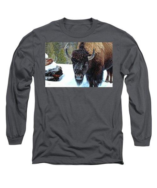Yellowstone Buffalo Stare-down Long Sleeve T-Shirt