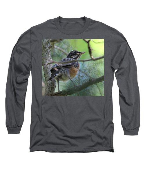 Young American Robin Setauket New York Long Sleeve T-Shirt by Bob Savage