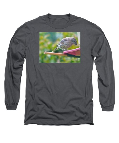 Young Crossbill Female  August  Indiana Long Sleeve T-Shirt by Rory Cubel