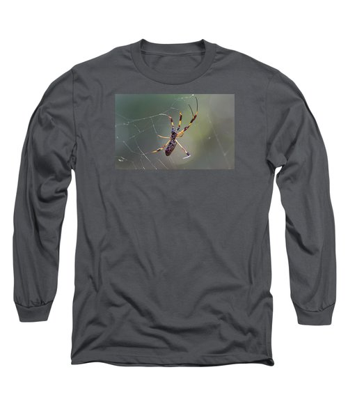 Young Golden Silk Female Long Sleeve T-Shirt by Kenneth Albin