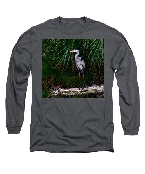 Young Great Blue Heron Long Sleeve T-Shirt