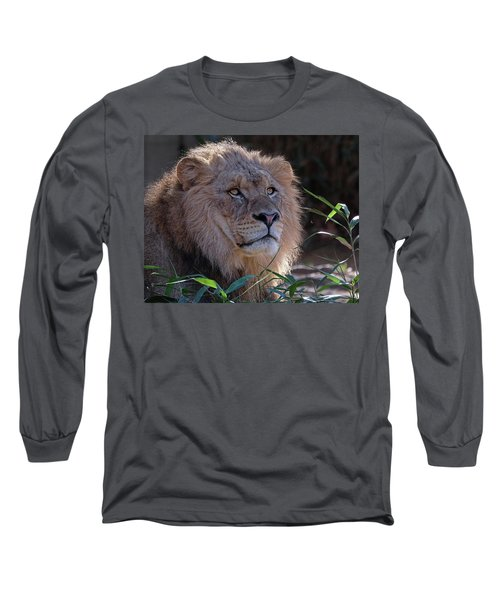 Young Lion King Long Sleeve T-Shirt by Ronda Ryan