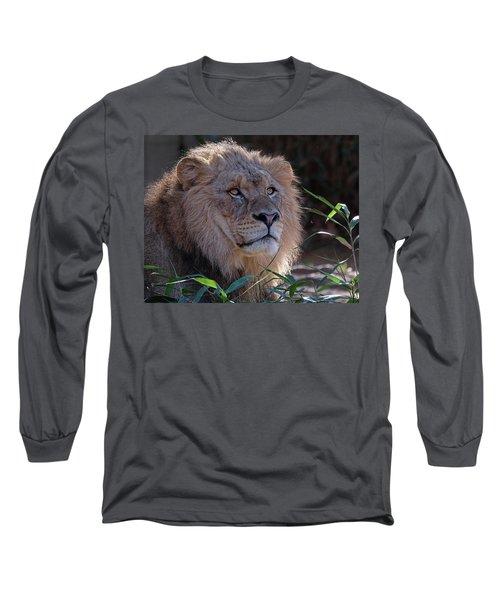 Young Lion King Long Sleeve T-Shirt