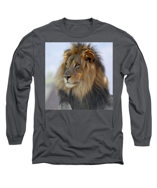 Young Male Lion Long Sleeve T-Shirt