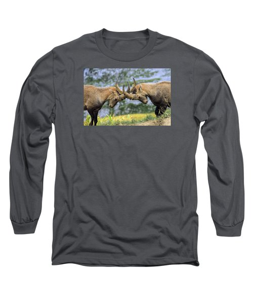 Young Male Wild Alpine, Capra Ibex, Or Steinbock Long Sleeve T-Shirt